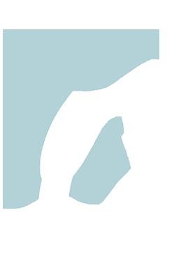 Casey Clark Logo